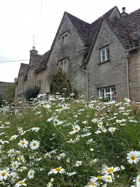the cotswolds (4)