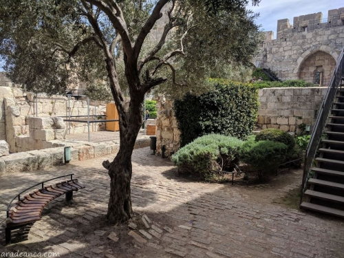 Ierusalim (08) City of David