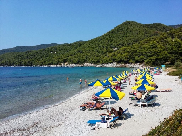 Skopelos part2 (04) Milia Beach